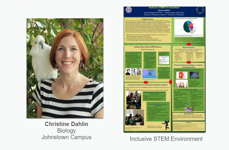 Extended Diversity Experience 2018: Christine Dahlin