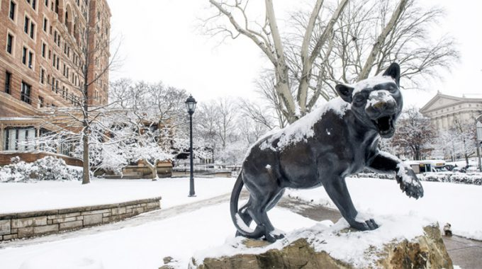 Panther Outside Of The Pitt Union In The Snow.